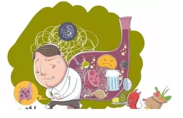 富迪小分子肽生活網健康科技有限公司精彩奖金制度茶多酚